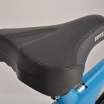 rsk01_saddle