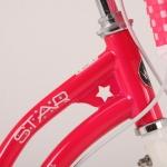 rb-stargirl_detail_03